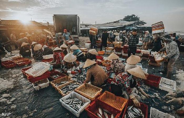 Cảng Cá Lộc An - Du Lịch Vũng Tàu - Nguồn :NHP