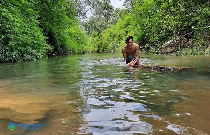 Suối Tiên Núi Dinh, Tân Thành, Bà Rịa