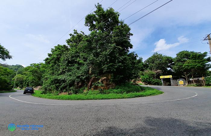 Đường lên Núi Dinh, Tân Thành, Bà Rịa - Vũng Tàu