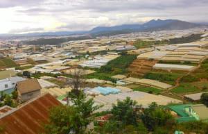 Đà Lạt - Vùng Đất Mộng Mơ